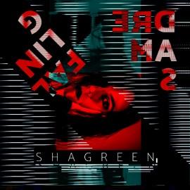 "SHAGREEN - Falling Dreams 12"""