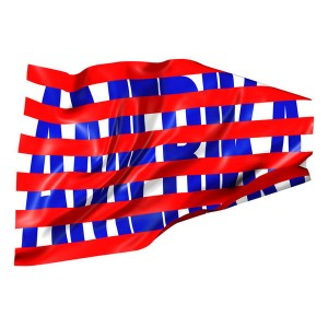 AVDIĆ, DAMIR - Amerika KNJIGA + CD