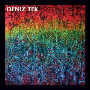 TEK, DENIZ - Mean Old Twister LP