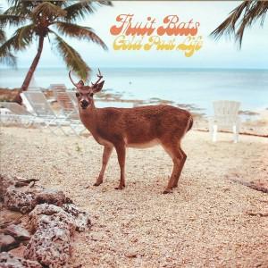 FRUIT BATS - Gold Past Life LP
