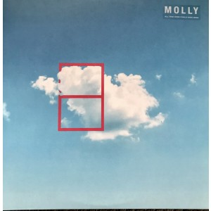 MOLLY - All That Ever Could Have Been 2LP