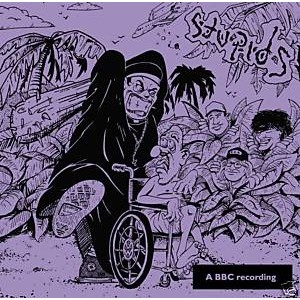 STUPIDS - The Complete BBC Peel Sessions LP