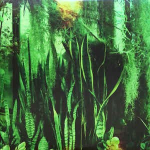 PROMISE RING - Wood/Water 2LP