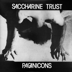 SACCHARINE TRUST -  Paganicons LP